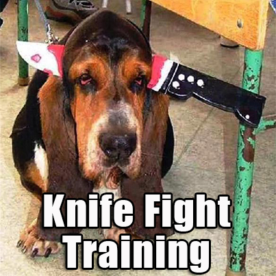 Realistic Knife Defense Training