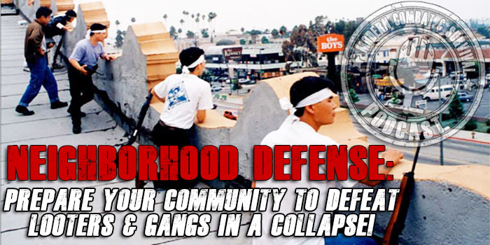 Neighborhood Defense Planning In A Collapse